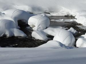 Viele Bäche des Hochgebirges sind von Natur aus fischfrei