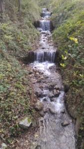 ökolgisch degradiertes Gewässerabschnitt am Brandisbach: Brandisbach: Querbauwerke und kahlgeschlagene Ufergehölze, welche von invasiven Neophyten beherrscht werden