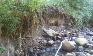 Fließgewässer sind dynamische Systeme und sie formen das Gewässer- durch Hochwasserschutzbauten werden dynamische Prozesse verhindert