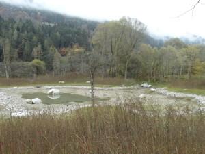 An die Stelle des einstigen Auwaldes ist eine Geländervertiefung mit Steinumrandung getreten