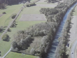 Ehemaliger Auwald längs der Rienz- einige Fichten sind im unteren Bereich gut erkennbar- der Rest der Au bestand aus Erlen, Weiden und zahlreichen anderen Laubbäumen und Sträuchern
