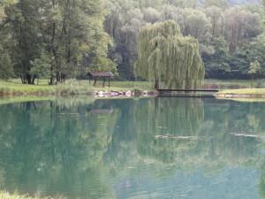 Natura 2000 Gebiet: ein großer Fischerteich