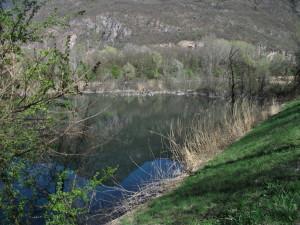 aus den beiden Teichen am orografisch linken Ufer wurde eine große Wasserfläche