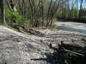 Materialaufschüttung auf ehemaliger Quellflur im Auwald