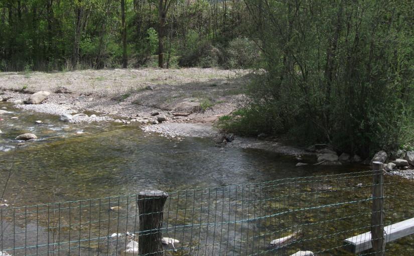 Biodiversitätsverlust durch Gesaltungen und Revitalisierungen
