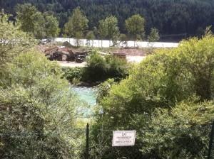 8 ha Auwald wurden im Biotop weggebaggert und zerstört.