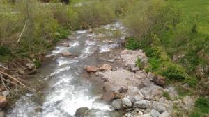 Falschauer in St. Gertraud mit Ufergehölzen