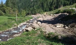 Revitalisierung- Zerstörung der naturnahen Ufergehölze