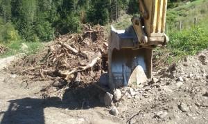 Wälder werden bei der Revitalisierung weggebaggert