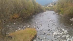 """Natur am Eisack in Brixen ohne """"Aufwertung"""" mit natrunahen Auwäldern am Ufer und Flussröhricht"""