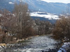 """Ufergehölze am Eisack Brixen vor """"Aufwertung"""" des Flussraums"""
