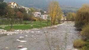 Nach Aufwertung des Flussraumes: fehlende Ufergehölze